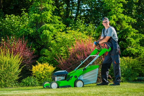 Lawn Care - Grass Mowing in Annapolis, MD